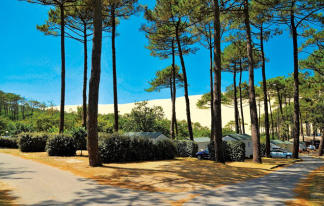 Camping La Forêt